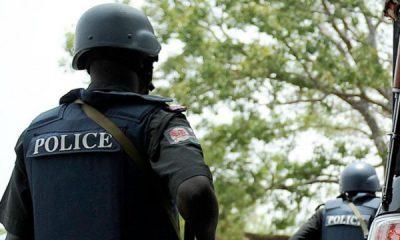 Police Deploy 8,292 Personnel For Delta LG Election