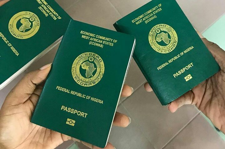 Image result for green passport