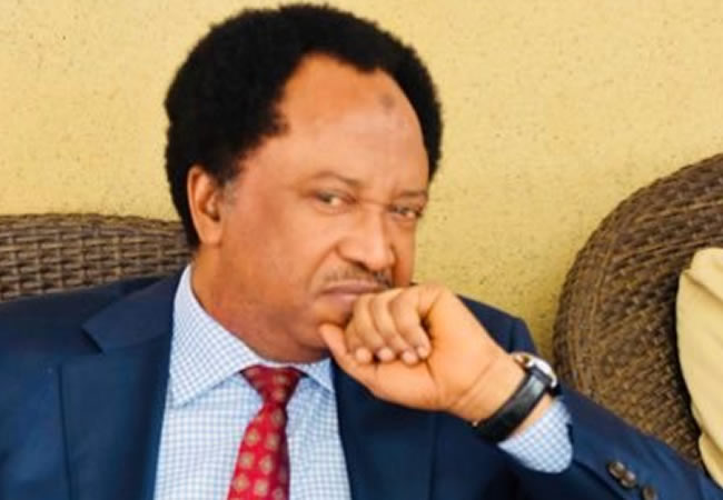 Do Not Let Them Waste Abducted Greenfield Students – Shehu Sani Cries Out