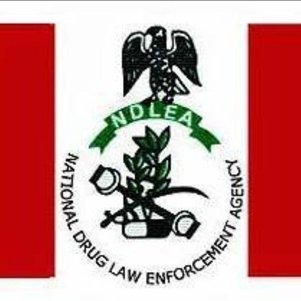 NDLEA Arrests Fake Security Agent Trafficking Drugs between Nigeria, Benin Republic
