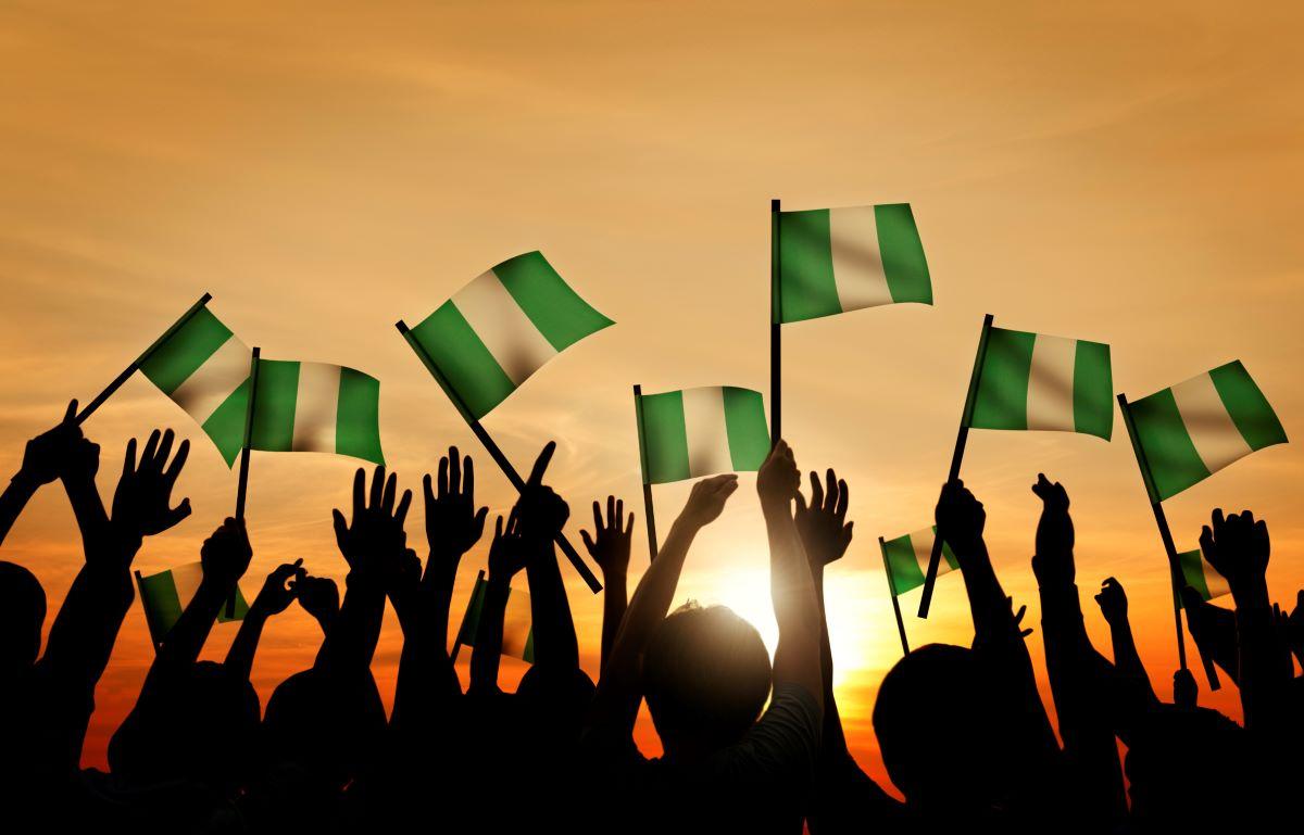 Nigeria Not A Failed State - ADP