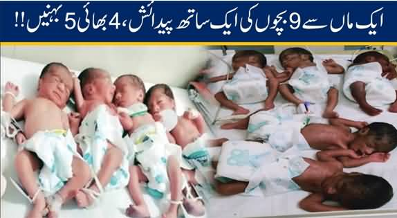 Nine Babies